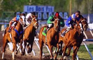 Strategia pentru cursele de cai