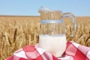 Este sau nu sanatos laptele UHT ?