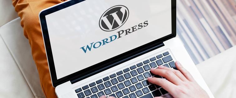 Ce tip de hosting se potriveste pentru platforma WordPress?